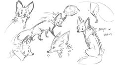 Some Emrys Studies. 3 Hes such an adorable little critter. https://www.facebook.com/CharacterDesignReferences