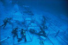 El naufragio del HMS Pandora 1984 Expedición