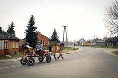 A rare view even in rural central Poland - a traditional cart, decorated for the holidays, runs through a quiet village / photo: Daniela Miernik