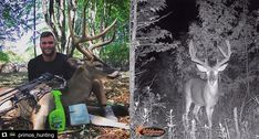 Dominic Bolognese Reflects on Stud. Bowhunting, Bolognese, Reflection, Archery Hunting