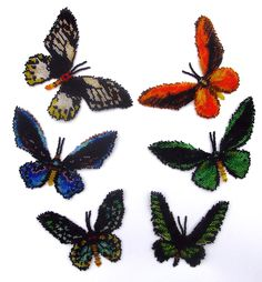 6 Bidwing Butterflies