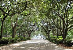 mansion on forsyth park | #savannah #ga #hotel #cityguide #travel #SouthEast