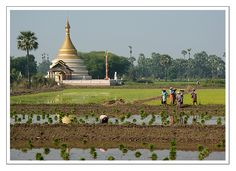 Life goes on - Inwa, Sagaing- Myanmar
