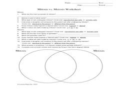 Mitosis Vs Meiosis Worksheet Graphic Organizer For 9th 12th