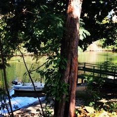 Lugares de paz #vegetação #barco#peace #riodejaneiro #instagram #instatudo #instaworld #pedacinhodocéu#pelomeucaminho #riopstcard #goodvibes #gersbrasil #fé #gostei #poraí #letsgoeverywhere #lugaresexóticos #domingo #dream — em Pelo meu caminho...
