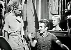 Glory in the Flower (1953)