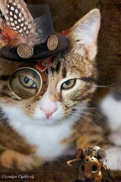 "Steampunk cats"" Rassel is a cat library . Costume Steampunk, Viktorianischer Steampunk, Design Steampunk, Steampunk Kunst, Steampunk Fashion, Steampunk Necklace, Steampunk Clothing, Gothic Fashion, I Love Cats"