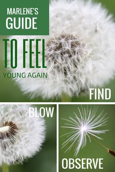 Guide to feel young again