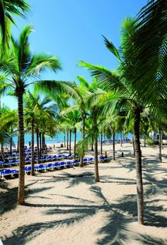 Hotel Riu Vallarta 5* All Inclusive - Mexico   Flamingos Beach - A Golden Playground For Kids   View Package Deals!