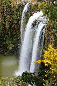 Daily Photo on the blog - Whangarei Falls, New Zealand: http://www.ytravelblog.com/whangarei-falls-new-zealand/ #NewZealand #NZ