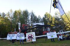 Po raz trzeci w ostatnim czasie aktywiści Greenpeace Polska, Fundacji Dzika Polska i przedstawiciele lokalnej społeczności rozpoczęli blokadę ciężkiego sprzętu dokonującego rzezi w Puszczy Białowieskiej. Wczesnym rankiem w czwartek (8.06) zablokowali wyjazd takiej maszyny na jednym z parkingów w okolicach Czerlonki.