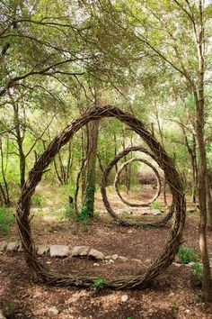 A Year in a French Forest: Sculpture No2. Forest Sculpture by Spencer Byles. ...