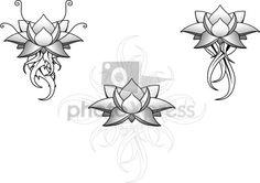 lotus flower patterns