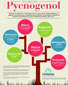 Qué es #pycnogenol #antioxidantes #OPC3 mx.shop.com/cecicuevas