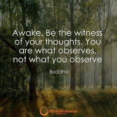 Awake. Be the witness of your thoughts. You are what observes not what you observe. -Buddha