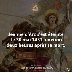 Jeanne d& s& éteinte le 30 mai environ deux heures après s. Jeanne D'arc, Funny Quotes, Funny Memes, Jokes, 30 Mai, Funny French, Image Fun, Funny Bunnies, Feeling Happy