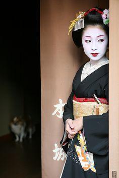 2008 Maiko Kimika From Kyoto, Japan by Watanabe-san Kimono Japan, Japanese Kimono, Japanese Art, Japanese Travel, Geisha Japan, Geisha Art, Geisha Makeup, Japan Japan, Kyoto