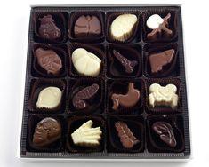 Visual Anatomy Chocolates - 16 Piece Assorted Chocolate Box