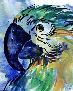 Macaw Note Card by beachcomberscove on Etsy, $3.00