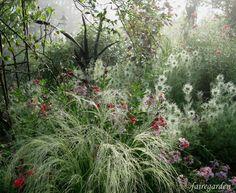 Foggy spring morning-Fairegarden