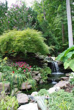"""Tropical Home Design Ideas,  """"pond"""""""