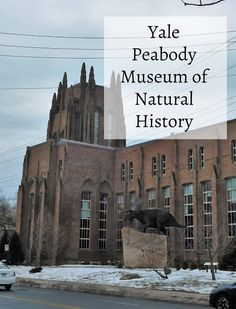 """Exploring the Yale Peabody Museum"" Travel With Kids, Family Travel, Peabody Museum, Connecticut Usa, Boston Museums, What To Pack, Natural History, Places To See, National Parks"