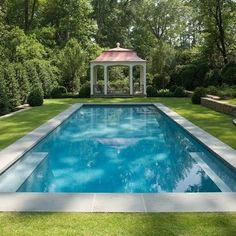 Design by Golightly Landscape Architecture. Rectangle pool surrounded by grass.