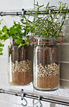 Turn quart jars into hanging planters you can fill with succulents or herbs. --Lowe's Creative Ideas Hanging Jars, Hanging Planters, Lowes Creative, Creative Ideas, Fixer Upper Decor, Herb Garden In Kitchen, Hamptons Decor, Interior Garden, Modern Farmhouse Kitchens