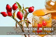 Natural Remedies, Smoothie, Cancer, Vegetables, Smoothies, Vegetable Recipes, Natural Home Remedies, Veggies, Natural Medicine