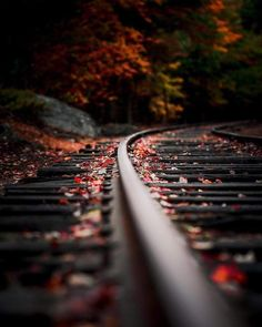 Check out this fine nature photography art! Autumn Photography, Creative Photography, Amazing Photography, Art Photography, Beautiful Landscape Photography, Railroad Photography, Photo Background Images, Photo Backgrounds, Nature Pictures