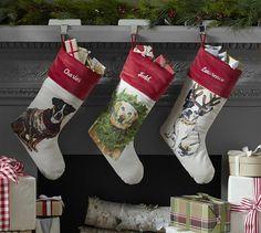 Pet Stockings   Pottery Barn