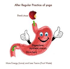 Yoga for Digestion- Rejuvenate your digestive system the ancient way - http://yogaadvise.com/yoga-for-digestion-rejuvenate-your-digestive-system-the-ancient-way/