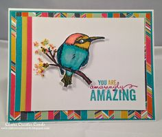 Claire Broadwater: Claire Creates Cards – You Are Amazingly Amazing --PP232 - 2/15/15 (SU/ 2015 SAB: A Happy Thing stamp.  Confetti dsp)
