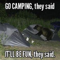 These camping memes are motivational, thought-provoking, quite a few will make you chuckle. These camping memes will make you want to go camping!