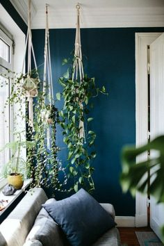 Hanging plants bring atmosphere to every home! Atmosphere Hanging plants every - - Wall Decor Design, Dark Living Rooms, Room Design, How To Feng Shui Your Home, Bedroom Plants, Home Decor, Living Room Plants, Living Decor, Living Room Designs