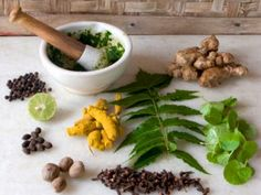 Herbs and Spices for Cardiovascular Health