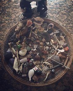 Basket bone reading #basket #bone #reading #divination #african #kongo #congo #style #bakulu #ancestors #skulls #palos #sticks #roots #shells