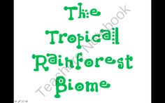 Tropical Rainforest PowerPoint Presentation from Miss B's Special Education Classroom on TeachersNotebook.com (15 pages)  - Tropical Rainforest PowerPoint Presentation