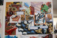 MORRISONS ACADEMY HIGHER DESIGN RESEARCH Textile Patterns, Textile Art, Nature Poem, Structured Fashion, Ed Design, Gcse Art Sketchbook, Higher Art, Sketch Books, Design Research