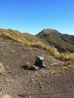 Looking North towards Mount Crawford.