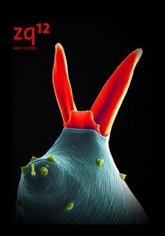 zq12E (zygote quarterly español) by marjan eggermont - issuu