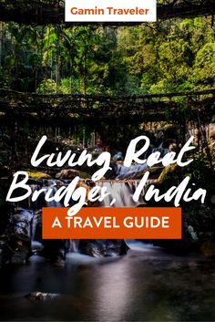 A Guide to the amazing Living Root Bridges via @gamintraveler