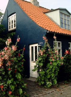 "cityhopper2:  ""  Old town house with flowers, Aarhus, Denmark  photography by cityhopper2  """