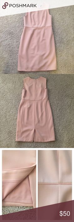 """Ann Taylor Pale Pink Sleeveless Shift Pencil Dress Beautiful pale pink / peach color rayon blend slimming dress with piping detail at the waist and seams, round neckline, sleeveless tank style, with back kick pleat. Fully lined. I love this dress I've just lost too much weight to continue wearing it. Some light wear under the armpits as pictured. Recently dry cleaned with dry cleaning tag still in place. Measurements taken laying flat: armpit to armpit 19.5"""", waist 16.5"""", length 39"""". I'm…"""