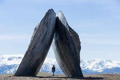 ensamble studio erects structures of landscape at montana's tippet rise art center