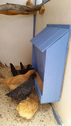 The DIY Chicken Coop Ark - Life ideas projects ideas chicken coops The D. - The DIY Chicken Coop Ark – Life ideas projects ideas chicken coops The DIY Chicken Coop A - Chicken Garden, Backyard Chicken Coops, Backyard Farming, Chickens Backyard, Moveable Chicken Coop, Inside Chicken Coop, Cute Chicken Coops, Chicken Coop Decor, Chicken Coop Pallets