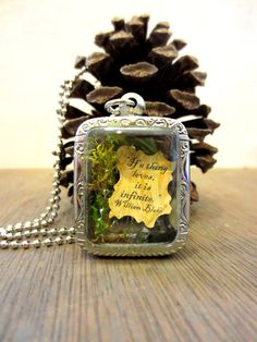 Your love is Infinite....Miniature Terrarium with by FaerieNest, $24.00