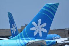 Air Tahiti Nui A340 tail