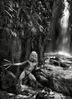 Sebastião Salgado's most recent photographic work turns away from his now more traditional themes – e.g. labour, migration, war and genocide … what may be summarised as a concern …