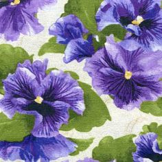 Lovely in Lavender Large Pansies on Cream